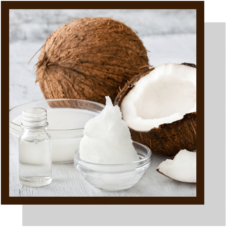 Huile de coco index nutraceutique Nutrixeal Info