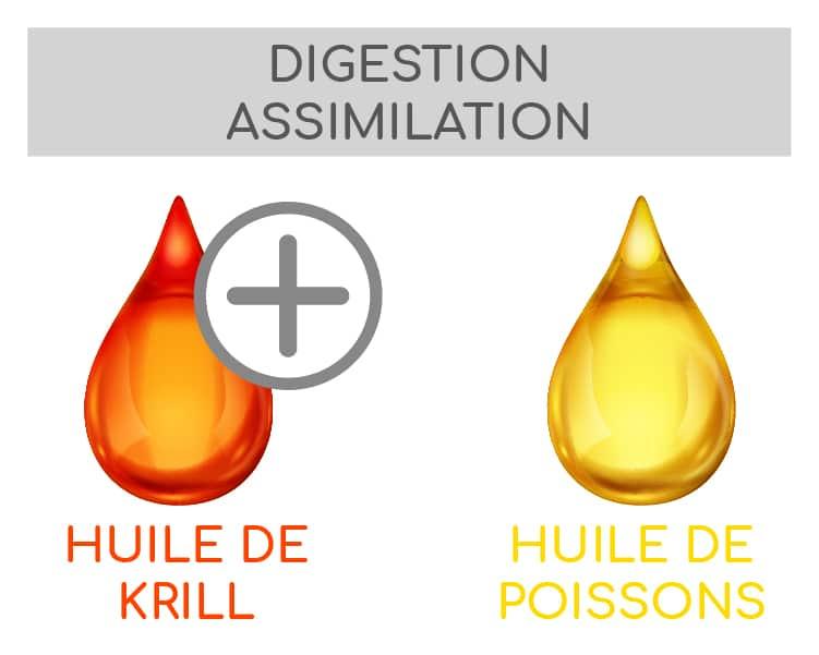 match huile de krill et huile de poissons triglycérides phospholipides nutrixeal info 2