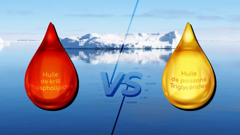 triglycerides phospholipides huiles krill et poisson nutrixeal info