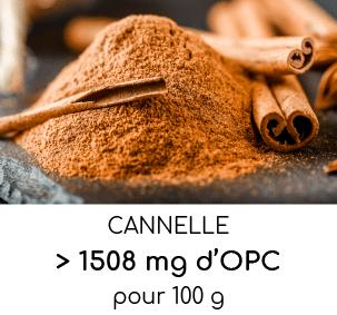 cannelle riche en opc oligo-proanthocyanidines nutrixeal info