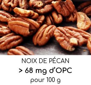 noix de pecans riches en opc oligo-proanthocyanidines nutrixeal info