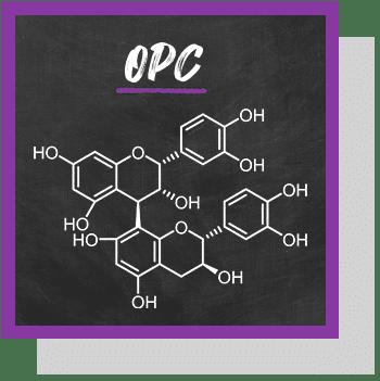 opc oligo-proanthocyanidines index nutraceutique nutrixeal info