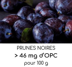 prunes riches en opc oligo-proanthocyanidines nutrixeal info
