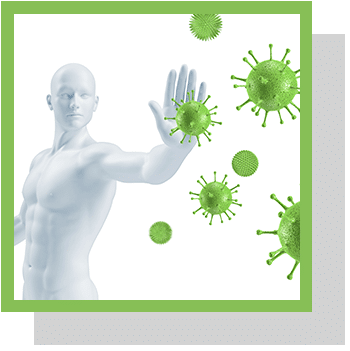Système immunitaire Index physiologique Nutrixeal Info