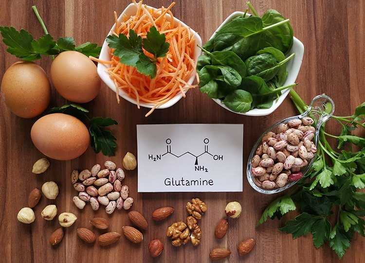 Aliments sources L-glutamine Nutrixeal Info