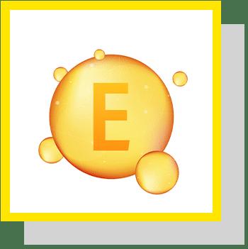 Vitamine E index nutraceutique Nutrixeal Info