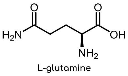 structure de la L-glutamine Nutrixeal Info