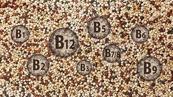 vignette article quinogerm vitamines B