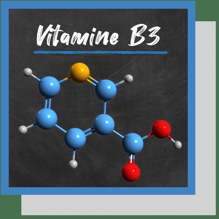 vitamine B3 niacine niacinamide index nutraceutique nutrixeal info