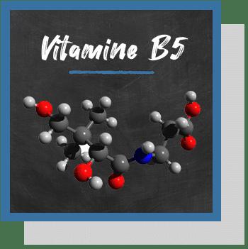 vitamine B5 niacine index nutraceutique Nutrixeal Info