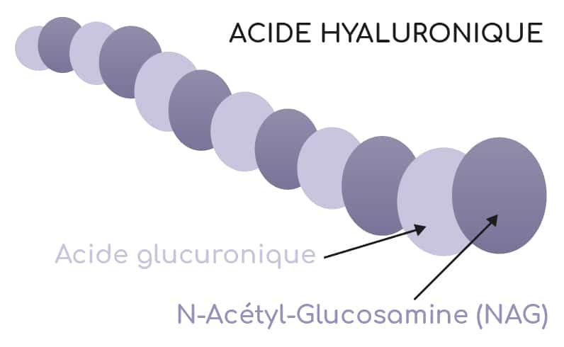 acide hyaluronique et NAG Nutrixeal Info