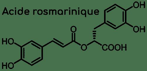 acide rosmarinique mélisse Nutrixeal Info