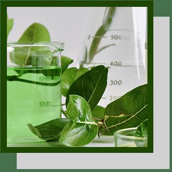 extraction végétale index technologique Nutrixeal Info
