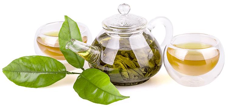 thé vert Nutrixeal Info