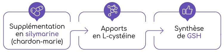 chardon-marie silymarine et glutathion Nutrixeal Info