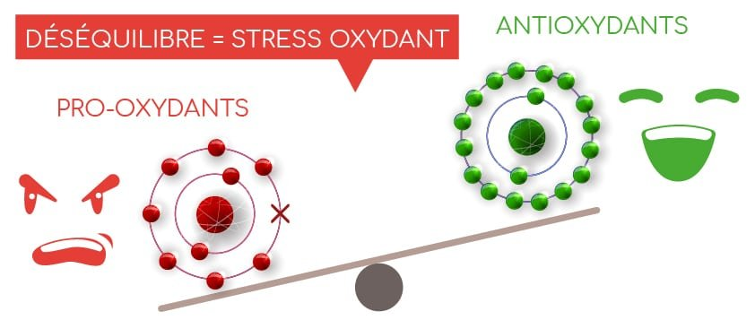 equilibre redox stress oxydant Nutrixeal Info