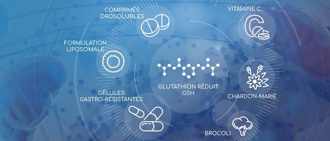 glutathion et nutraceutique Nutrixeal Info 2